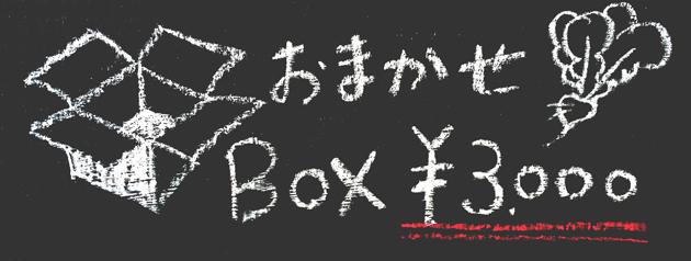 BOX3000_iconS